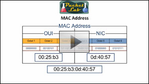 Cisco Quick Tip - Using MAC Address To Determine Manufacturer